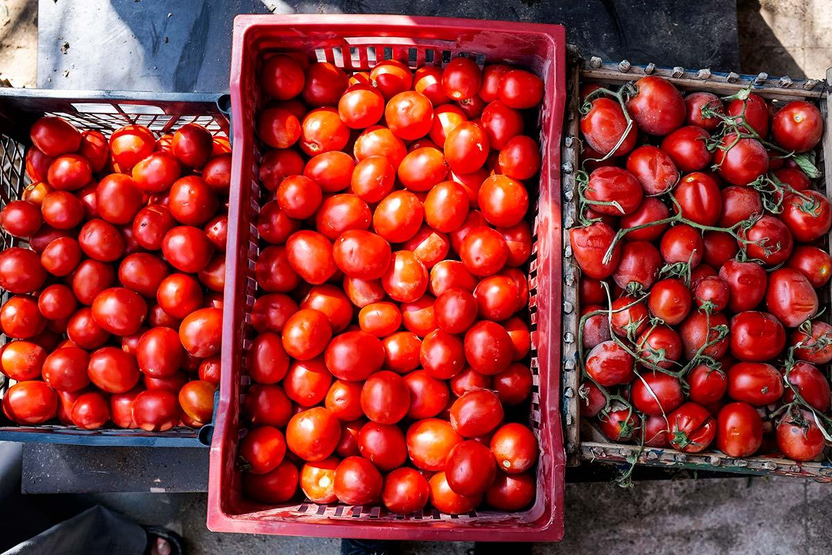 Crates of tomatoes. Photo ©FAO/Heba Khamis
