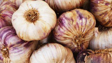 Garlic. Photo: Nick Fewings/Unsplash