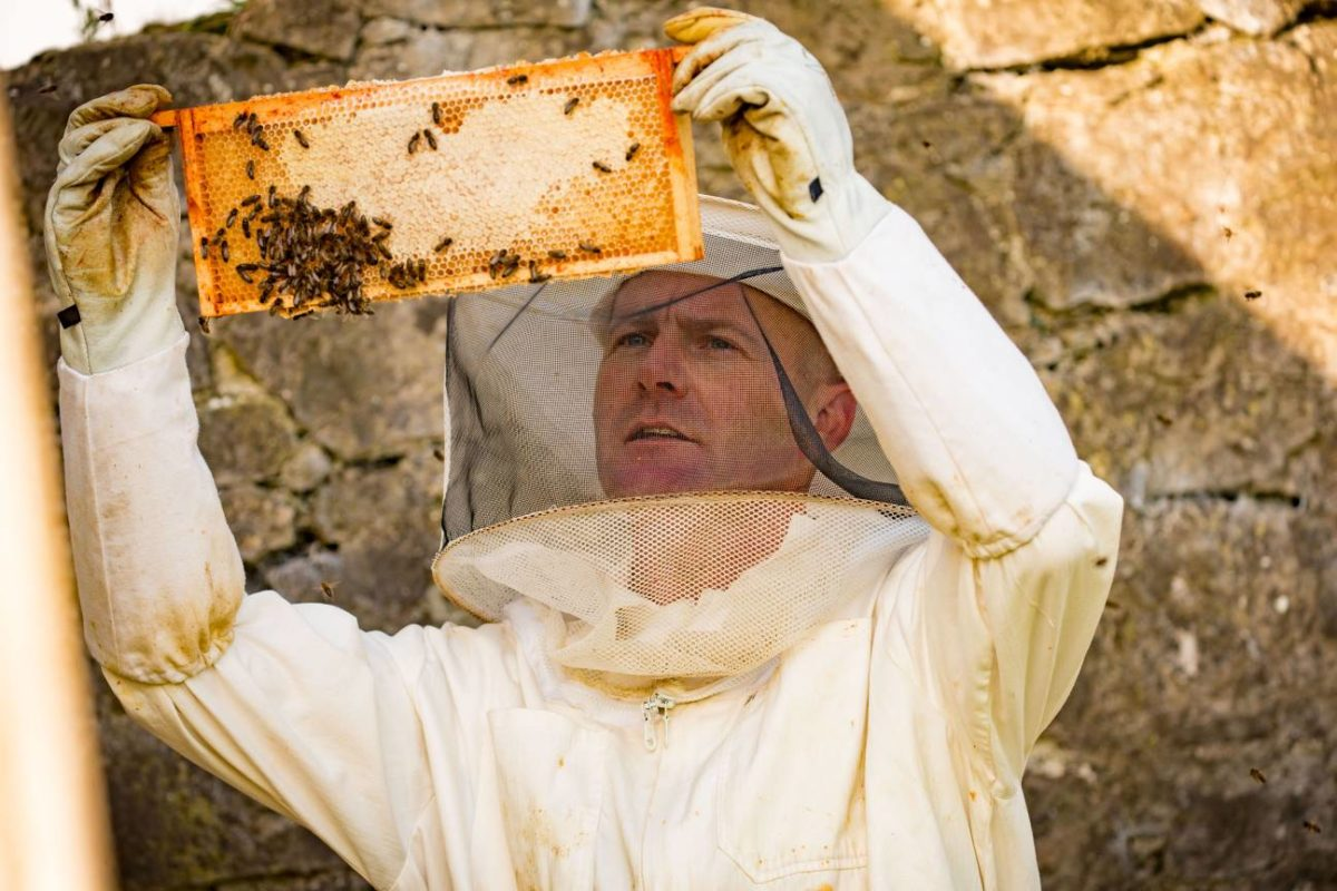 Francis Nesbitt, pictured on a beekeeping course in Kilkenny.